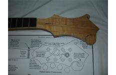 Luthier Related Image