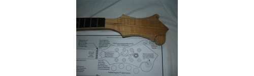 Luthier Plans